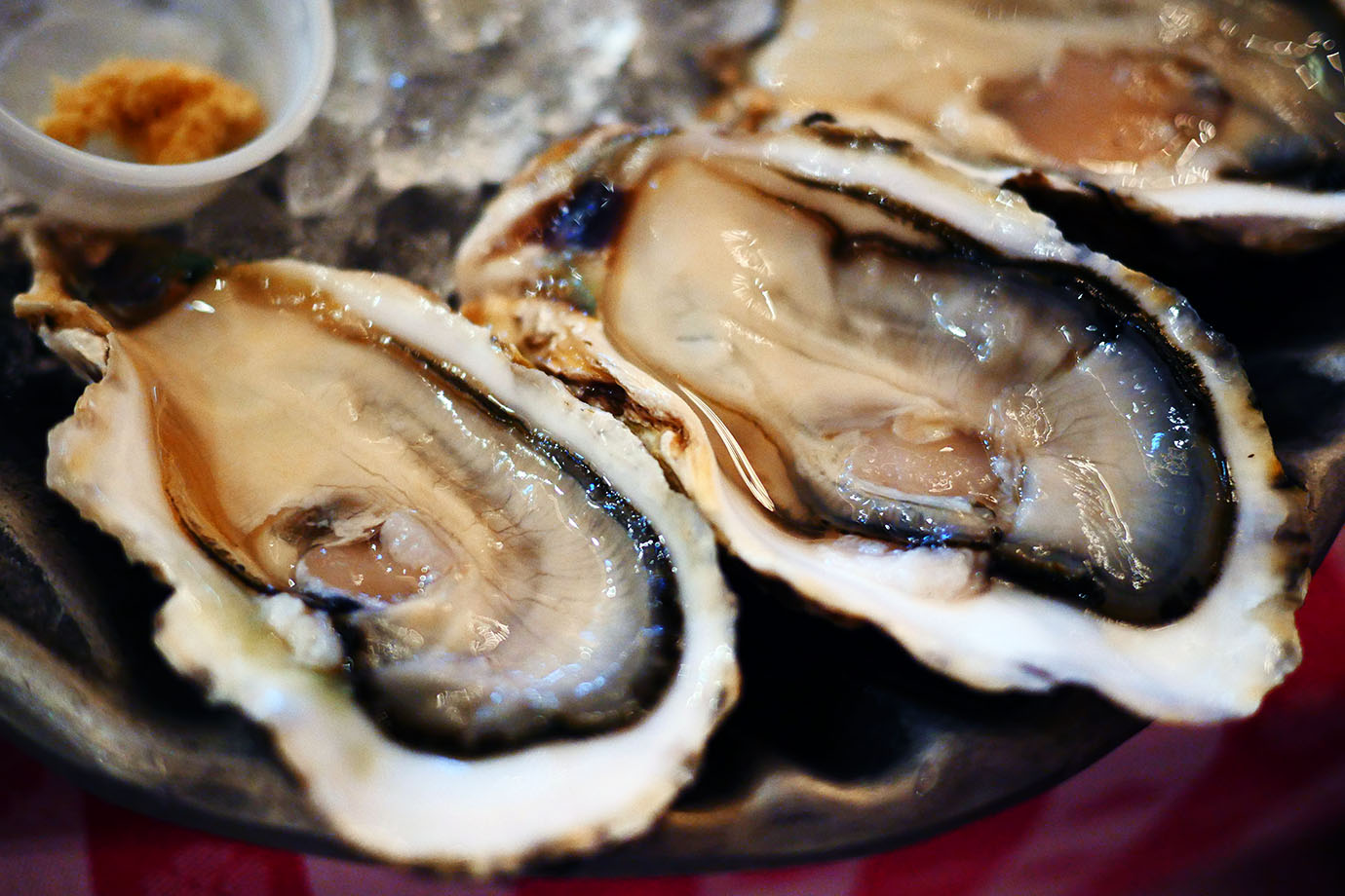 grand-central-oyster-bar3