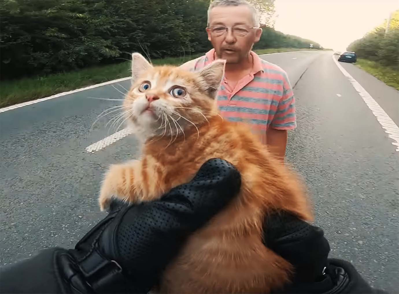 rider-who-helps-a-cats-life-news2